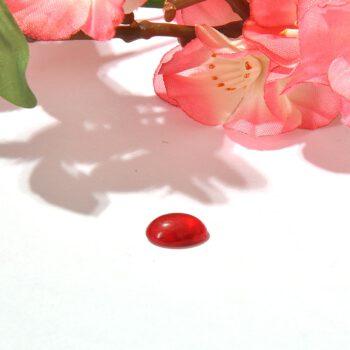 یاقوت،خواص یاقوت،فروشگاه جواهرات،نحوه تراش دادن، سختی یاقوت چند است،یاقوت چند رنگ دارد، سنگ های قیمتی،سنگ جواهرات، چگالی یاقوت، قیمت یاقوت طبیعی، 09025283869 ،انواع یاقوت ، خریدجواهر،تراش دادن الماس،فروش انگشتر، یاقوت برمه، خرید یاقوت،فروش یاقوت، فروش یاقوت زرد، یاقوت کبود ، سافایر، فروشگاه جواهرات تاج، جواهری تاج، جواهر تاج، تاج گالری، گالری تاج، جواهرات تاج، فروشگاه تاج، قیراط، فروش گوشواره یاقوت، فروش دستبند یاقوت ، فروش انگشتر یاقوت ، فروش گردنبند یاقوت ، سرویس یاقوت ، نیم ست یاقوت